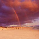The Rainbow Beach Butterfly by CarlyMarie