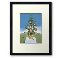 Peaches and Green Framed Print