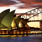 Sydney Icons Closeup by Melissa Fiene