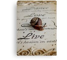 Philosophy of a Snail  Canvas Print