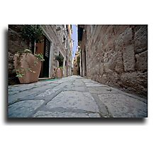 An alley in Croatia  Photographic Print