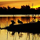 Sunset Silhouettes by Melissa-Louise