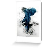 Eudyptula minor: All the pretty little things.  Greeting Card