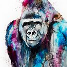 Gorilla by Slaveika Aladjova