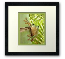Frog Happy - Entices you to return his warm smile Framed Print