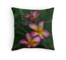 Hawaiian Sunset FrangipaniI - Colour of Passion Throw Pillow