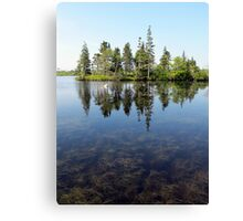 Doggetts Pond Landscape Canvas Print