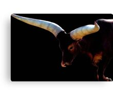 The Cattle of Kings ~ 2 Canvas Print
