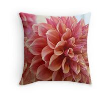 Shades of Coral Pink Throw Pillow