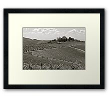 Vineyards of Tuscany Framed Print