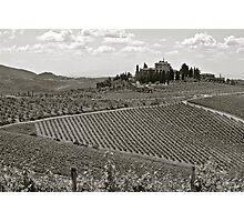 Vineyards of Tuscany Photographic Print