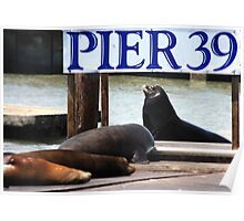 Pier 39 Poster
