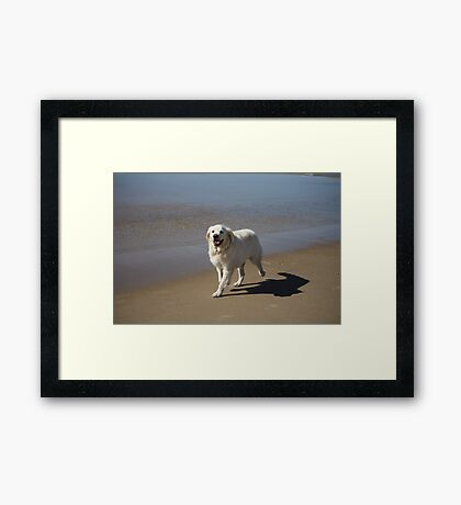 Oh Happy Day!!! Framed Print