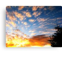 Sky and Earth contrast Canvas Print