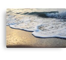 Gracing The Morning Shore Canvas Print