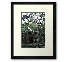 Abandoned Sugar Mill in Belize Jungle Framed Print