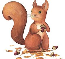 Red squirel by elisaferreira