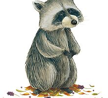 Raccoon by elisaferreira