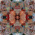 P1420322_P1420312 _XnView _GIMP by Juan Antonio Zamarripa