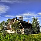 Overgrown Barn by Gary Smith
