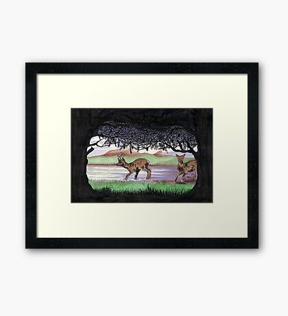 Out of the Forest II `Roe Deer in Morayshire Framed Print
