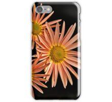 Orange Chrysanthemum iPhone Case/Skin