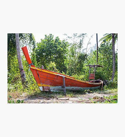 Jungle and boat wreck Photographic Print