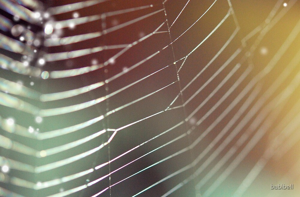 Rainbow Web by Claire Dimond