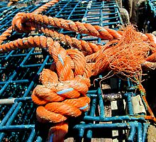 Lobster trap and orange rope by RevJoc