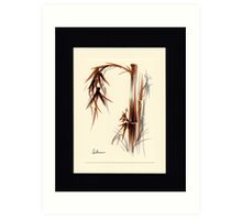 Huntington Gardens Plein Air Bamboo Drawing #1 Art Print