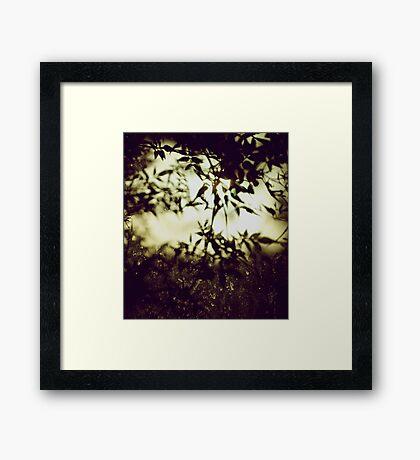 Impermanence  Framed Print