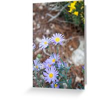 Tiny Violet flowers Greeting Card