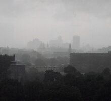 La Deluge by Shulie1