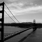 san francisco by rattus