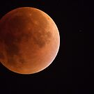 Lunar Eclipse 2015 by Neil Bygrave (NATURELENS)