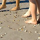 Toes and sea-shells on the sand by clearviewstock