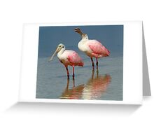 I am so upset,how could you say that ! Greeting Card
