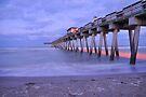 Venice Pier by Kim McClain Gregal