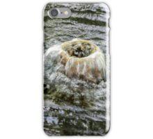 fountain gushing iPhone Case/Skin