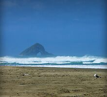 Ninety Mile Beach View by Tanya Rossi