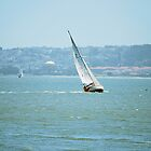 Sailing The Bay by Cathy Jones