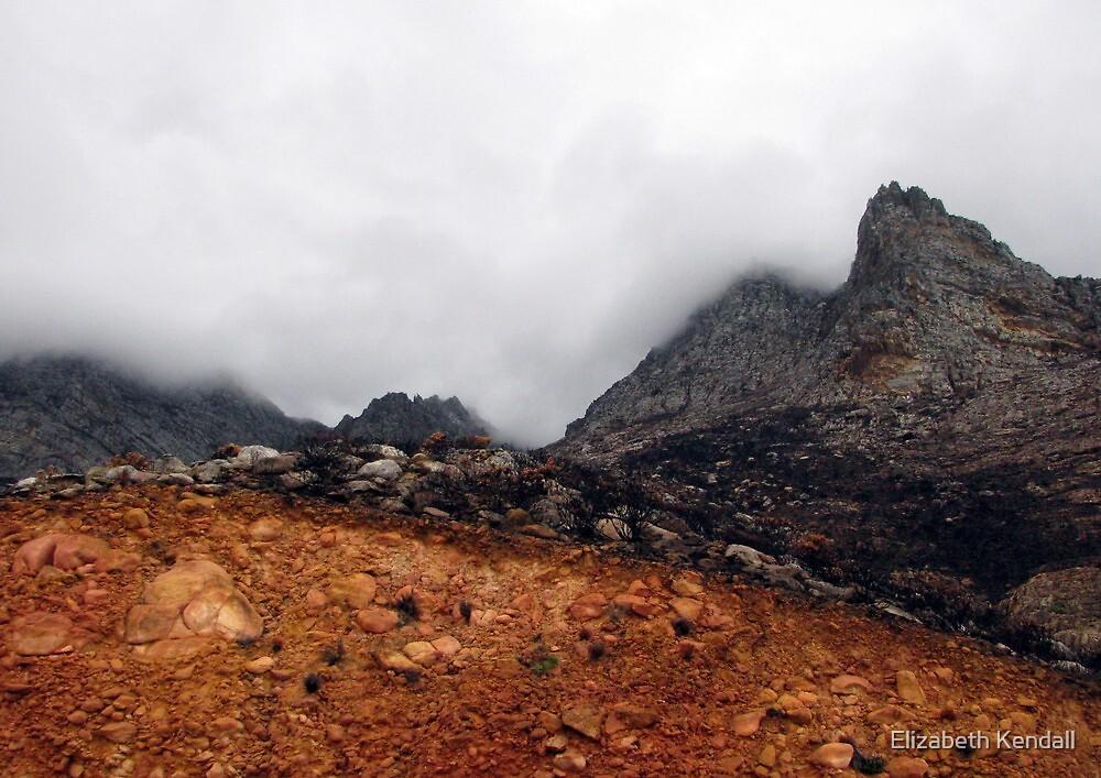 Misty mountain (Palmietberg, Cape) by Elizabeth Kendall