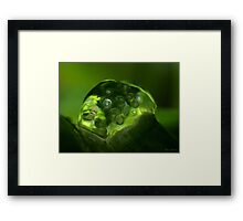 My Green world....... Framed Print