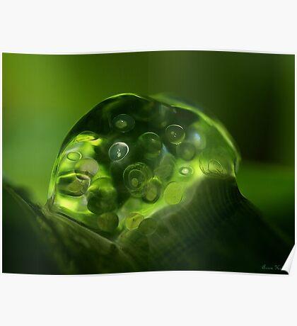 My Green world....... Poster