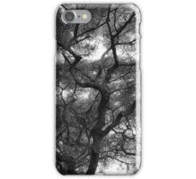 Canopy iPhone Case/Skin