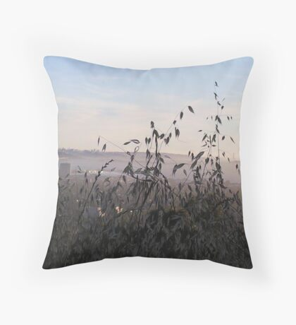 Claremont Canyon 1 Throw Pillow