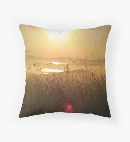 Claremont Canyon 3 Throw Pillow