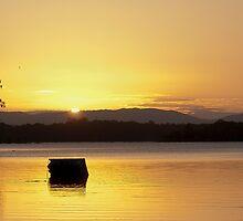 Bullocky's Rest Lake Samsonvale by gamaree L