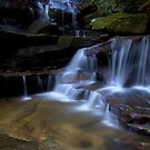 Middle Somersby Falls NSW by Sharon Bree