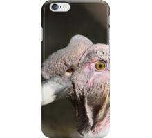 Eye of the condor iPhone Case/Skin